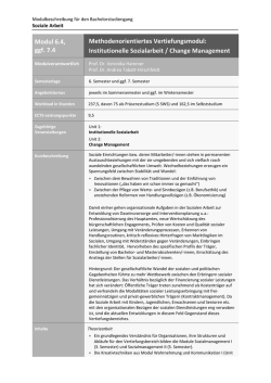 Institutionelle Sozialarbeit / Change Management