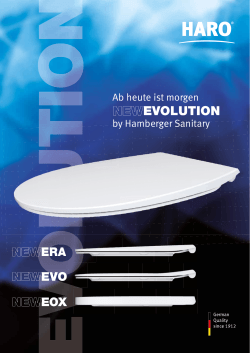 "Flyer ""Evolution"""