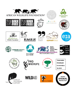Tanzania Elephant Protection Society