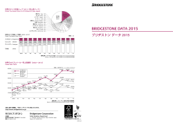 BRIDGESTONE DATA 2015