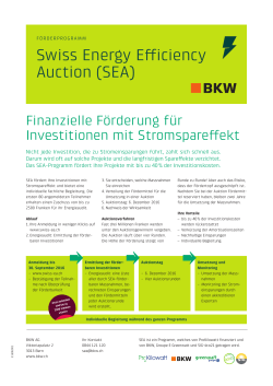 Swiss Energy Efficiency Auction (SEA)